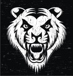 Grunge Tiger Head vector image