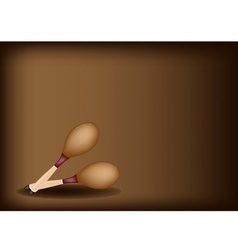 Two beautiful maracas on dark brown background vector
