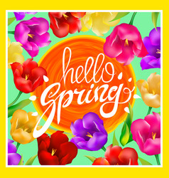 Hello spring with bright colorful vector