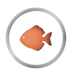 Discus fish icon cartoon singe aquarium fish icon vector