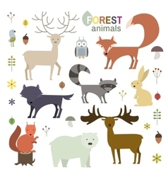 Forest animals set in flat style vector image vector image