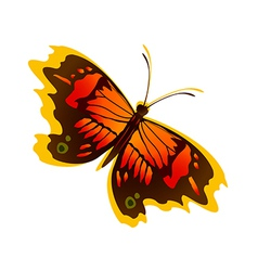 icon butterfly vector image vector image