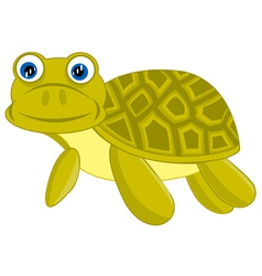 Cartoon of the terrapin on white background vector image vector image