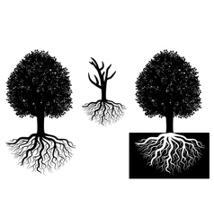 Isolated tree with roots vector image vector image