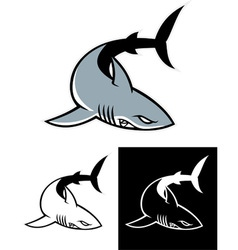 simple shark mascot vector image