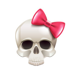 girl skull with pink bow isolated on white vector image