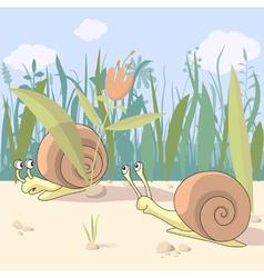 Snails vector