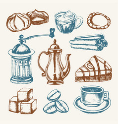 Delicious coffee - colored hand drawn vector