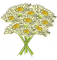 daisies drawing vector image vector image