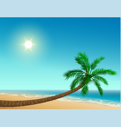 Paradise tropical beach inclined palm tree clear vector