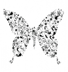 floral butterfly vector image