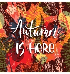 Lettering design with abstract autumn seamless vector