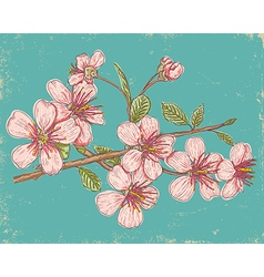Sakura 2017 card vector