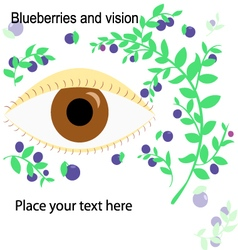 Berries and eye vector