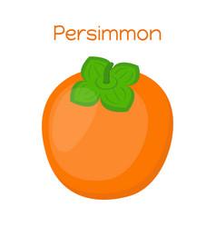 persimmon tasty vegetarian fruitsweet exotic food vector image