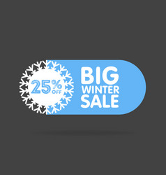 Winter sale and discount snowflake promotional vector