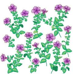 petunia set vector image