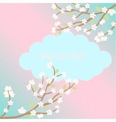 white sakura blossom card vector image