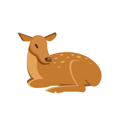 Spotted fallow roe deer lying wild animal cartoon vector
