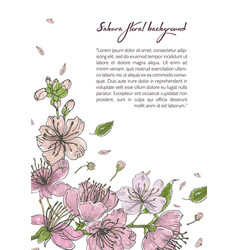 spring background with blooming sakura flowers vector image