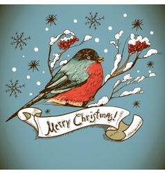 Christmas greeting card with bullfinches vector