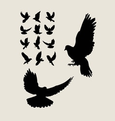 Dove flying silhouettes vector