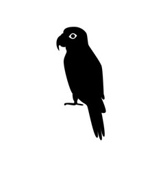 Amazon parrot silhouette icon in flat style vector