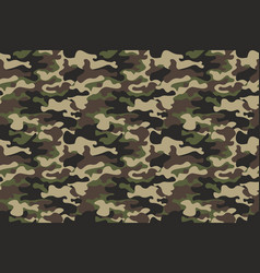 camouflage seamless pattern background horizontal vector image