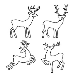 Outlined deer set silhouettes vector