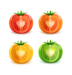 Set of big red green orange yellow cut tomatoes vector