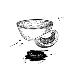 Tomato sauce drawing isolated vector