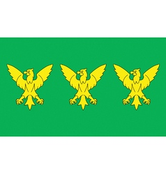 Flag of Caernarfonshire vector image