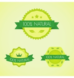 Set of organic badges and labels vector image