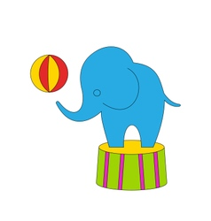 Dexterous circus cartoon elephant on podium with vector