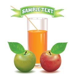 Glass for juice from the ripe red and green apple vector