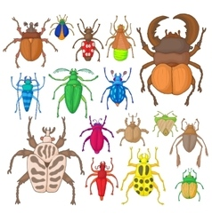 Bug icons set vector image