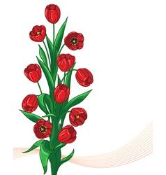 Red tulip bunch vector