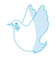 dove the bird of peace vector image