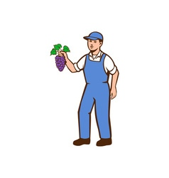 Organic farmer boy grapes standing retro vector