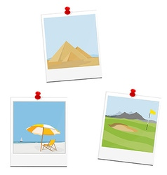 Poloaid pictures vector