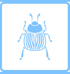 Colorado beetle icon vector