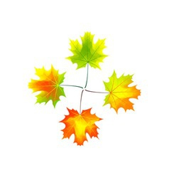 autumn cross vector image
