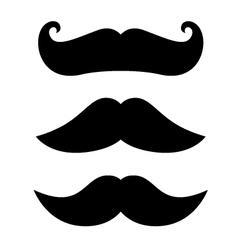 Mustache vector image vector image