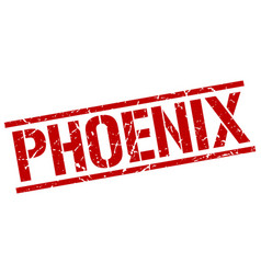 Phoenix red square stamp vector