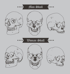skull vintage icon set vector image