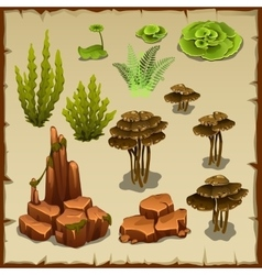 Big set of variety underwater plants and stones vector