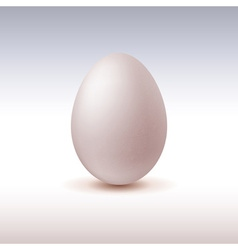 Chicken egg icon on light background vector
