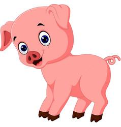 Pig cartoon vector