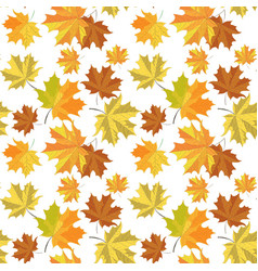 Seamless pattern with maple leaves on white backg vector
