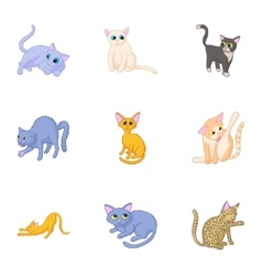 Cat family icons set cartoon style vector image
